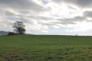 Farmland east of Okeford Fitzpaine