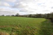 Farmland just outside Okeford Fitzpaine