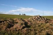 Ruins at Ardonald