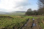 Farmland behind Rossie Ochill