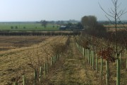 Towards Whinneymoor Farm