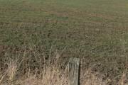 Farmland north of Washdyke Road