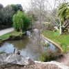 Ornamental pond, Oldway mansion, Paignton