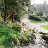 Rockery garden, Oldway mansion, Paignton