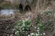 Bridge near Perrott's Brook