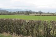 Flat farmland east of Staunton