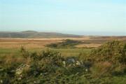 Near The Marshland