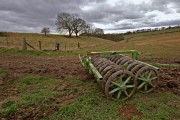 Towards Low Hunsley Plantation