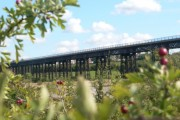 Bennerley Viaduct Bridge