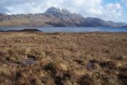 Moorland by Loch Maree