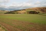Farmland to the south-southeast of Ferniehirst