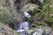 Bridge and Waterfalls, Holme Wood