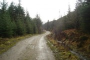 Forestry track in Glen Hurich