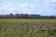 Lark Rise Farm