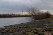The River Trent