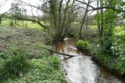 River Cober - downstream