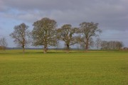 Farmland, Nuneham Courtenay
