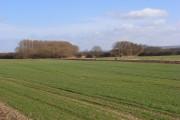 Farmland, Cuxham