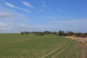 Farmland, Cuxham