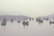 Fishing Fleet in Loch Broom