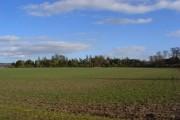 Farmland and woodland, Shirburn