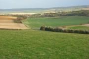 Farmland on the Moulsford Downs