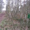Public Bridleway to Budby and Army Training Area