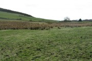 Rough grazing, from the road to Thornyhill Farm
