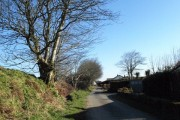 Lane through Tremail