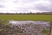 Farmland, Enfield Road, Enfield, looking west