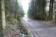 Woodland off B4276