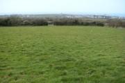 Fields by Downrow