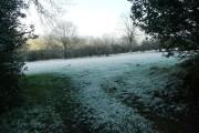 Fields above Craswall