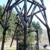 Hopewell Colliery