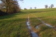 Farmland, Dunsden