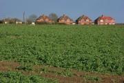 Houses and farmland, Dunsden