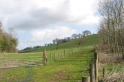 Fields South of Leigh Hall Farm