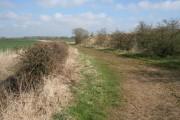 Farm track at Bassingfield