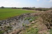 Farmland by the Grantham Canal