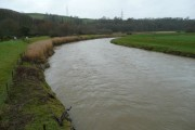 River Torridge - downstream