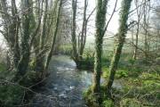 East Looe River - downstream
