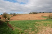 Farmland adjoining Linton Hill ridge in early April