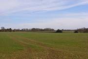 Farmland, Cookley Green