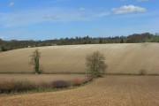 Farmland, Pishill