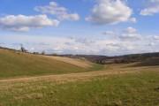 Pasture, Pishill