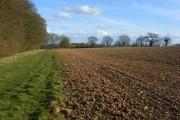 Farmland, Greenfield