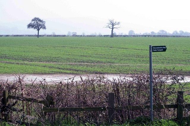 Footpath Sign Nr Natton