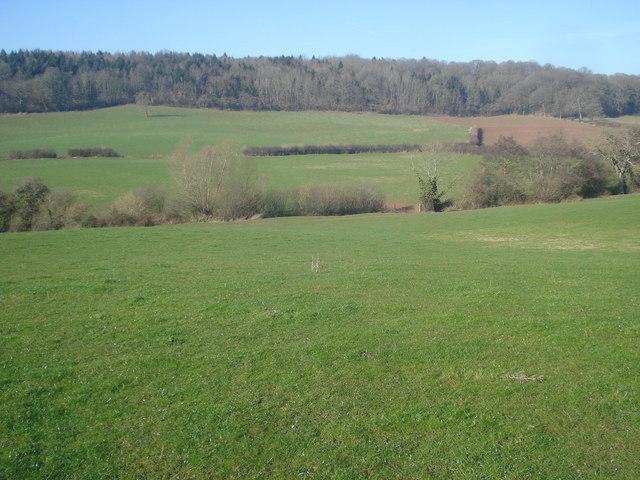 Farmland at Beacon Hill