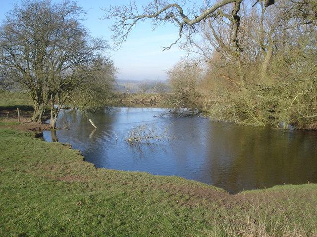 Duck pond at Hill Farm