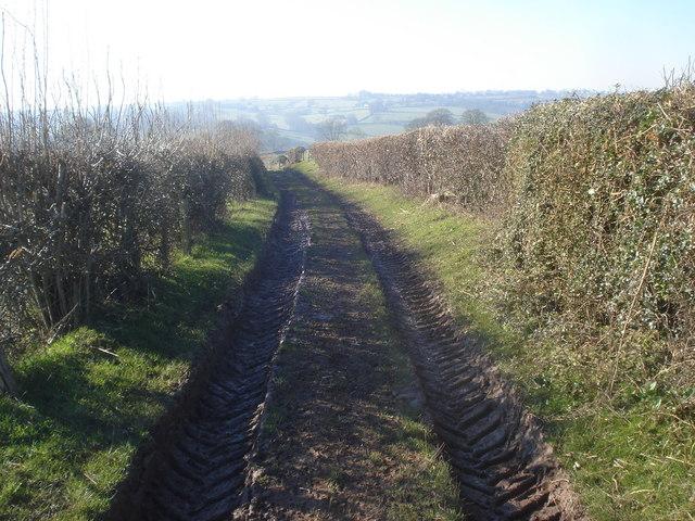 Farm track at Hill Farm